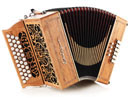 accordéon diatonique castagnari